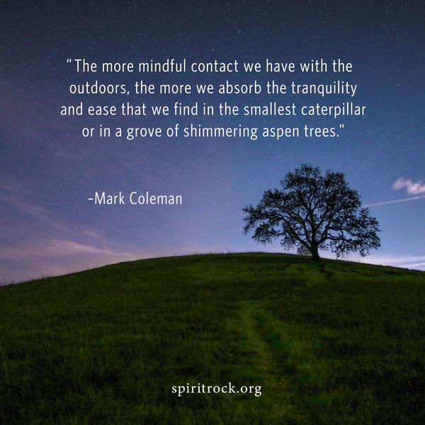 Mark Coleman quote