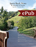 Newsletter ePub