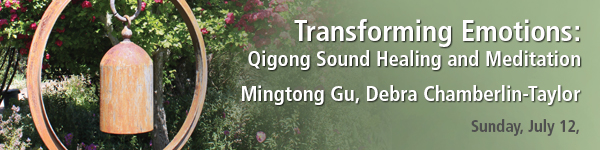 DC2D15 Mingtong Gu